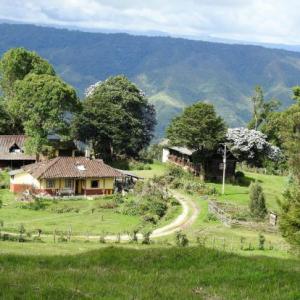 UN TESORO VERDE DE COLOMBIA – RESERVA NATURAL MEREMBERG [❤️míralo]